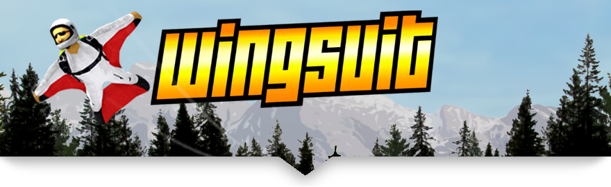 Wingsuit Pro Banner